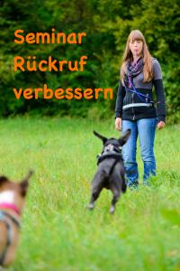 Tutschner-Baby1Hundeseminare München Rückruf