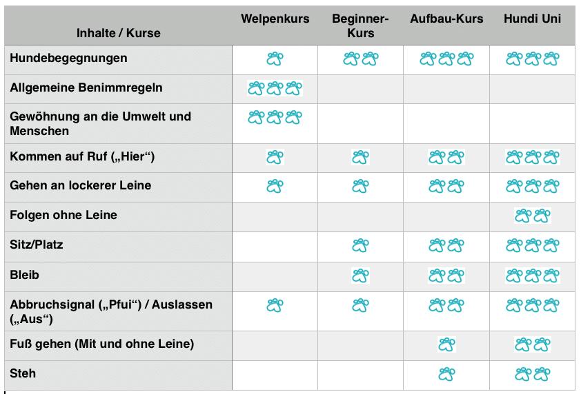 Hundeerziehung München Neuried und Starnberg